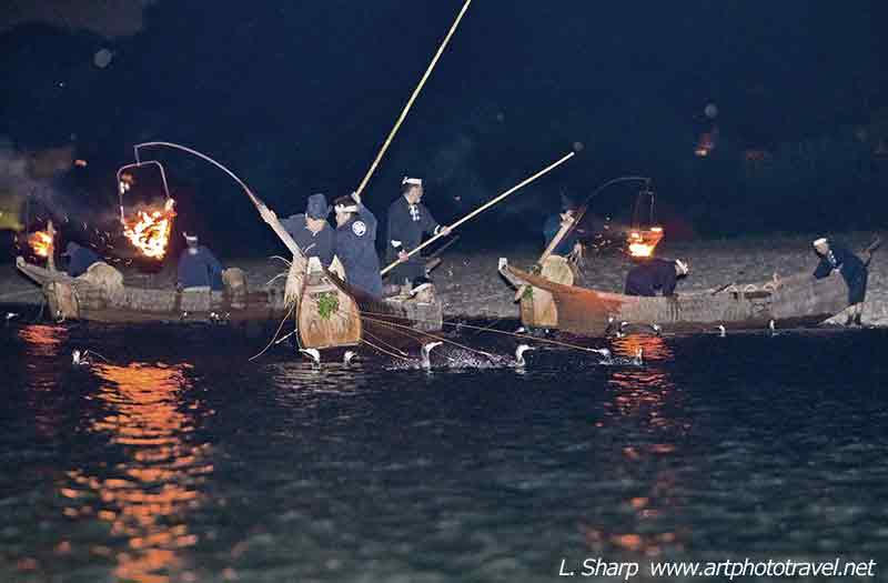 cormorant fishing Nagara River map