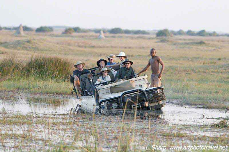 duba plains car-bogged