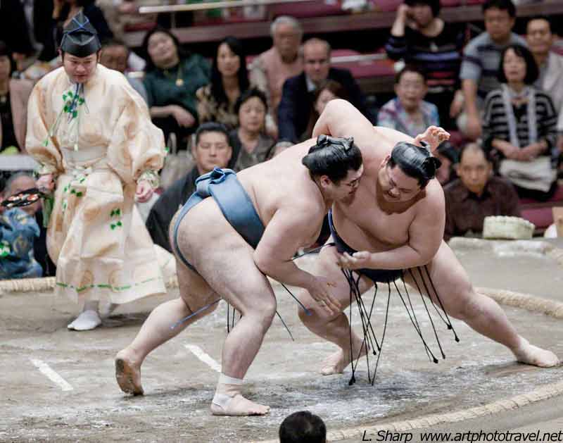 sumo-wrestling-view-from-section-c