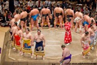 sumo presentation of the finalists
