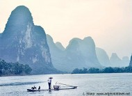 cormorant fishing on Li river near Xingping China