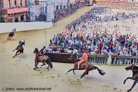 Palio 3rd trial at the San Martino bend