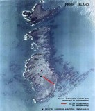 Prion island map. south georgia island