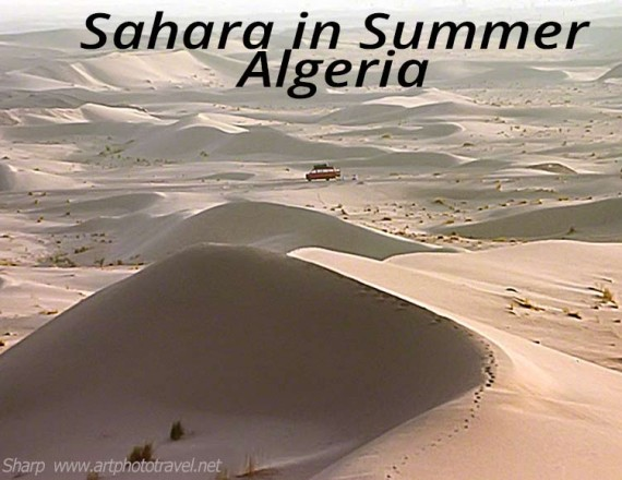 sahara in the summer algeria