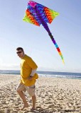 Kite flying at the Festival of the Winds