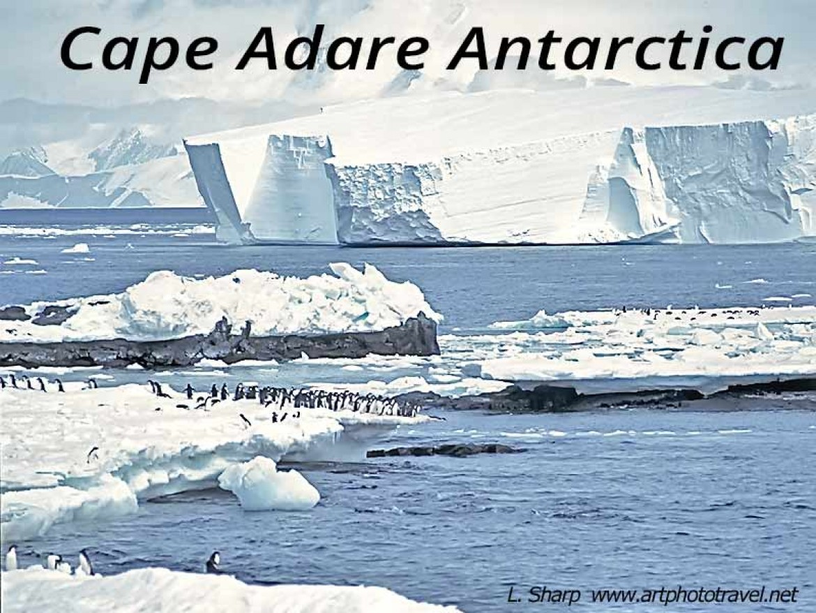 Cape Adare: penguins, iceflows & mountains.