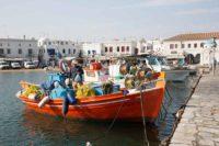 Mykonos fishing harbour