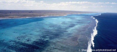 Ningaloo Reef view from spotter plane