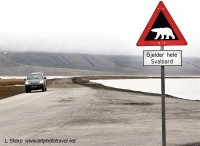 Polar Bear road sign Longyearbeyen